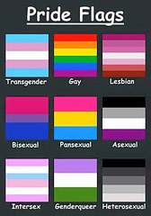 Pride Flags - Get Them Right